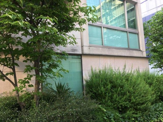 6db50cfe7e2 5月頭に赤坂に引っ越し、何よりも四ツ谷と違うと思い、嬉しいことは緑の量。圧倒的と言っていいと思うが、公園も公開空地の緑も集合住宅の植栽も多い。